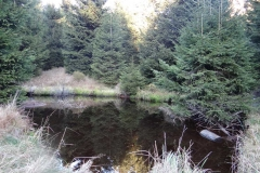 Nationalpark Brocken